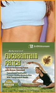 Wouldn't you like to have a FucoXanthin Patch Tummy?